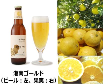 アジア最大のクラフトビールの祭典 最高評価を得たビール「湘南ゴールド」とは? 神奈川県知事賞、国際ビール大賞金賞 w受賞
