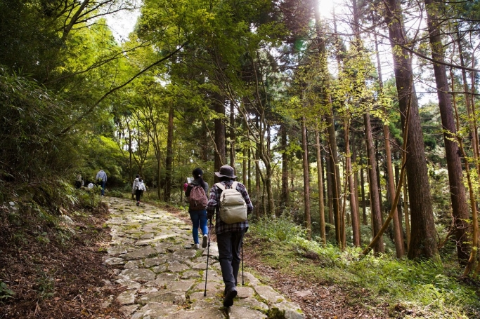 """~箱根の森の""""未病""""改善プロジェクト~オウンドメディアやSNSを活用し、リアルイベントで新たな観光資源開拓と未病改善を目指す <br />食・運動・癒やしを融合した、年に1度のスペシャルイベント 「はこじょマルシェ 2017」開催<br /> 2017年10月14日(土)10:00~16:00  会場:芦ノ湖畔 箱根やすらぎの森"""