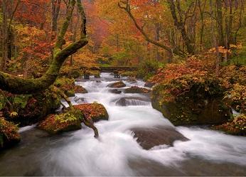 【HP限定】渓流と森のリゾートで過ごす連泊プラン