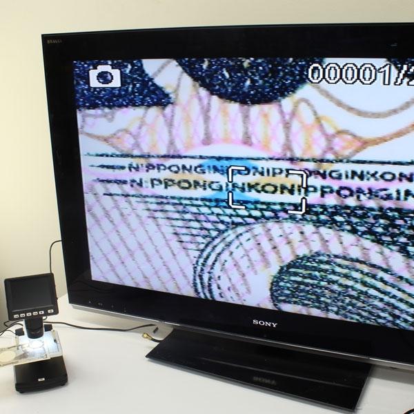 【上海問屋限定販売】夏休み 大きな画面でミクロの世界を見てみよう テレビやPCにも接続可能 3.5インチ液晶ディスプレイ搭載 デジタル顕微鏡 販売開始