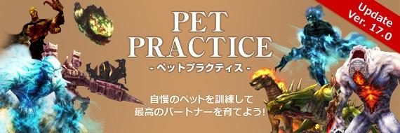 仲間と共に失われた時間を取り戻すオンラインRPG「Forsaken World」UPDATE Ver17.0「PET PRACTICE」本日実施!