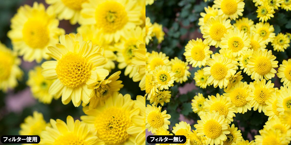 【上海問屋限定販売】1000円未満でプロカメラマンの技術に近づこう NDフィルター クローズアップフィルター 販売開始