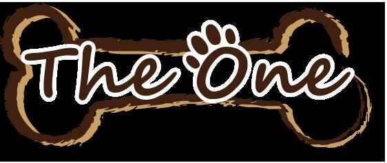 ジャック・ラッセル・テリア向けドッグウェアの通販サイト「TheOne」 ~オリジナルブランドも展開~