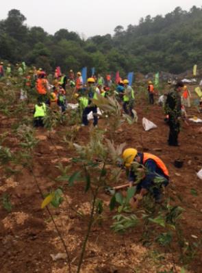 広州市採石跡地での植樹の様子2
