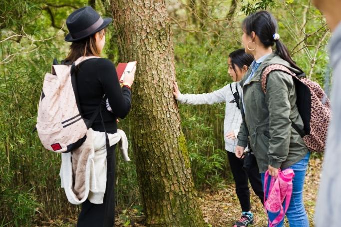 <箱根町主催>五感で学ぶ、未病改善プロジェクト 「はこじょウォーク&リラックス」5月27日(土)開催 ~ 森ヨガ&森林セラピー®で未病を改善 ~