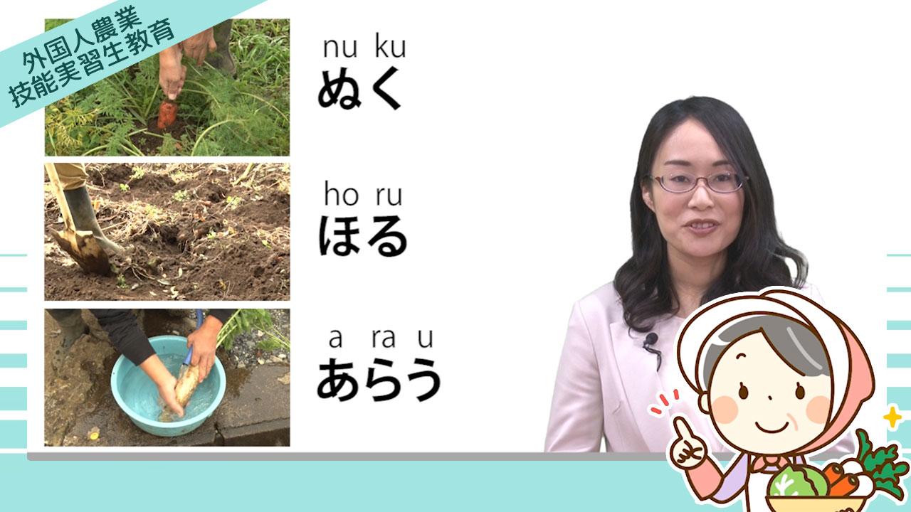 「農業技能実習生eラーニング」提供開始